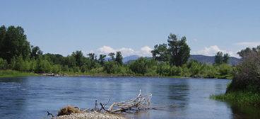 riverBannerLogo